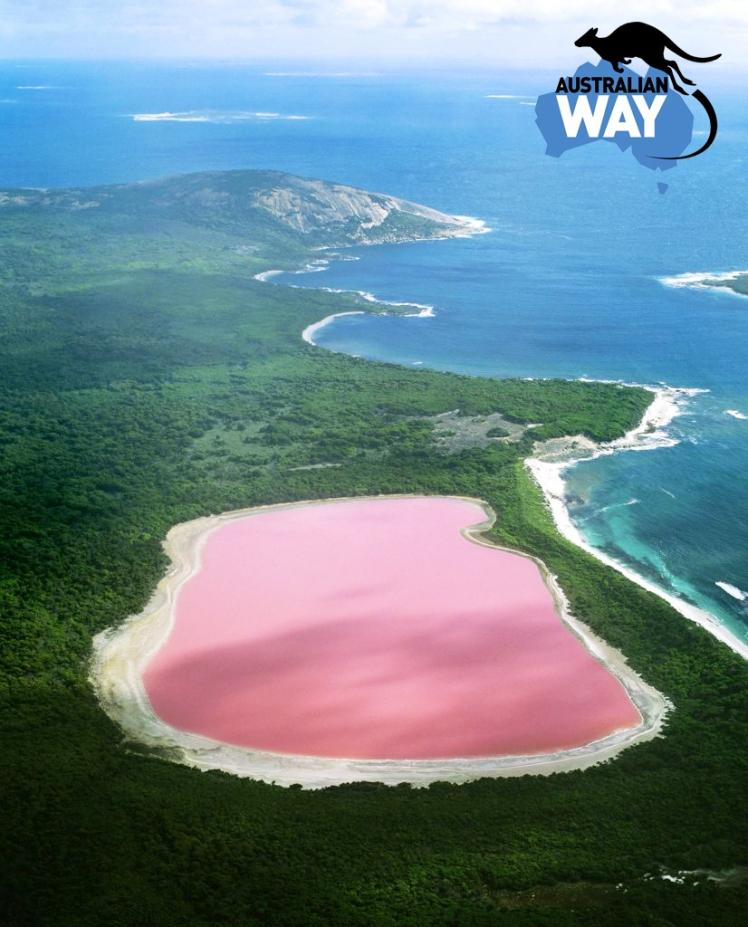 pink lake, western australia, estudiar en australia, estudia en australia, australianway.es, estudiaenaustralia.es