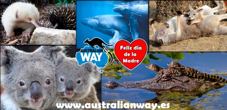 dia de la madre, estudiar en australia, estudia en australia, australianway.es, estudiaenaustralia.es